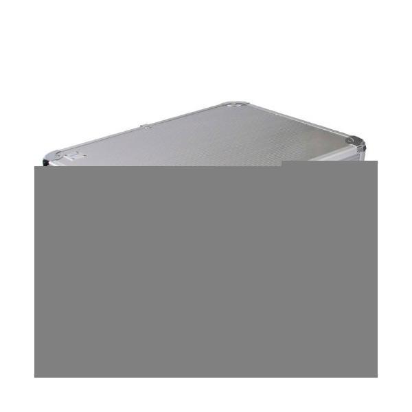 Dörr Silver 50 Briefcase/classic case Argento