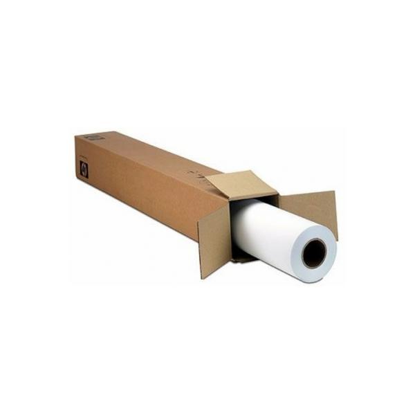 Epson Premium SemiGloss Photo Paper(170), in rotoli da 152, 4cm x 30, 5m 0010343864238 C13S042137 TP2_C13S042137