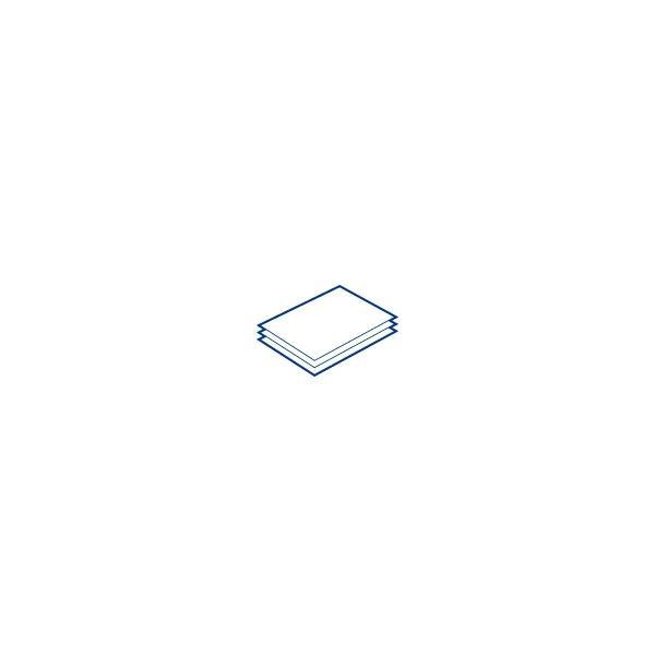 Epson Premium SemiMatte Photo Paper(260), in rotoli da 40, 64cm x 30, 5m 0010343865730 C13S042149 TP2_C13S042149
