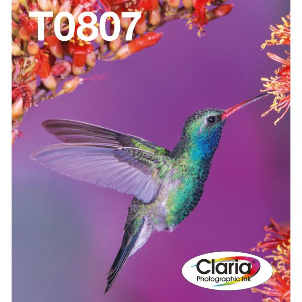 Epson C13T08074510 Nero, Ciano, Ciano chiaro, Magenta chiaro, Giallo cartuccia d'inchiostro  C13T08074510 TP2_C13T08074510