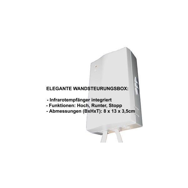 Celexon 1090074 schermo per proiettore 4:3