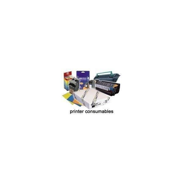Epson Imaging Nero 0010343604599 C13S051100 10_2358959