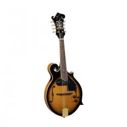 MANDOLINO SOUNDSATION  BLUEGRASS BMA-100ES SUNBURST F STYLE + PICKUP