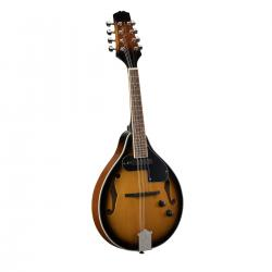 MANDOLINO SOUNDSATION  BLUEGRASS BMA-60E  VS SUNBURST + PICKUP